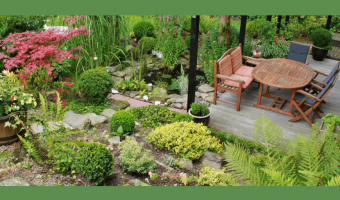 10 Good Reasons to Start a Terrace Garden - MOG