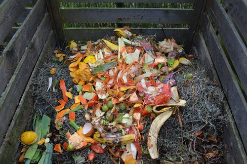 Common Gardening Mistakes To Avoid - composting