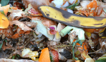 Make Compost from Kitchen Waste - MOG