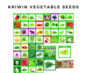 KRIWIN Vegetable Seeds